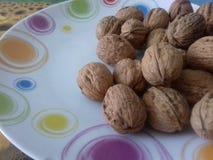 Грецкие орехи, деликатес гастрономии мира стоковое изображение rf