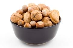 грецкие орехи ек фундуков миндалин Стоковые Изображения RF