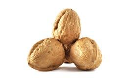 Грецкие орехи изолированные на белой предпосылке Стоковая Фотография RF