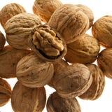Грецкие орехи изолированные на белизне Стоковые Фото
