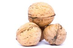 грецкие орехи изолированные предпосылкой белые Стоковые Фото