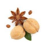 Грецкие орехи и звезда анисовки на белизне Стоковое Фото