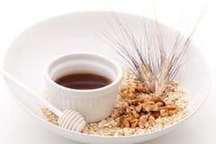 Грецкие орехи и зерно овсов Стоковая Фотография