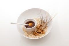 Грецкие орехи и зерно овсов Стоковое Изображение