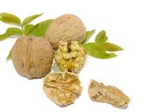 Грецкие орехи и листья на белой предпосылке стоковые изображения