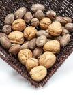Грецкие орехи и пеканы в большой части Стоковая Фотография RF