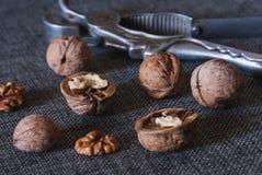 Грецкие орехи и Щелкунчик Стоковое Изображение