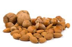 грецкие орехи лещин миндалин Стоковые Изображения