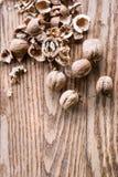 Грецкие орехи на деревянной предпосылке Съемка студии, космос экземпляра Стоковые Фотографии RF