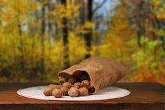 Грецкие орехи на таблице стоковые изображения