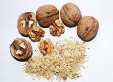 грецкие орехи обрабатывая в осени Стоковая Фотография