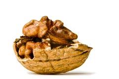 грецкие орехи предпосылки белые Стоковые Фотографии RF