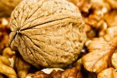 грецкие орехи предпосылки белые Стоковая Фотография