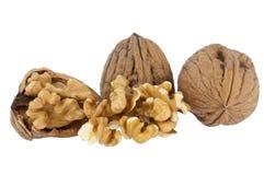 грецкие орехи предпосылки изолированные группой белые Стоковое Изображение RF