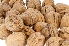 грецкие орехи предпосылки изолированные группой белые Стоковое фото RF