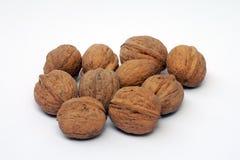грецкие орехи предпосылки белые Стоковое Изображение