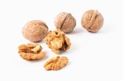 грецкие орехи предпосылки белые Стоковые Изображения