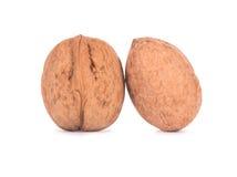 грецкие орехи предпосылки 2 белые Стоковая Фотография