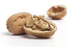 грецкие орехи раковины Стоковые Изображения RF