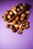 Грецкие орехи с раковиной Стоковые Фотографии RF