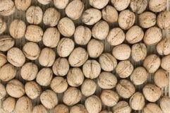 грецкие орехи текстуры Стоковые Изображения RF