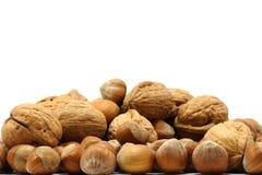 грецкие орехи фундуков стоковое фото