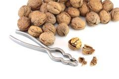 грецкие орехи Щелкунчика Стоковая Фотография