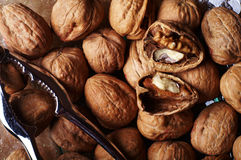 грецкие орехи 1 шутихи Стоковое фото RF