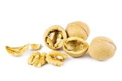 грецкие орехи Стоковое Изображение
