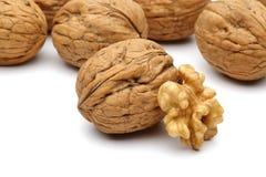 Грецкие орехи Стоковые Фотографии RF
