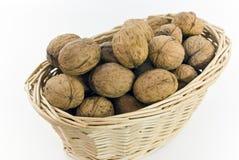 грецкие орехи bas свежие молодые Стоковые Изображения