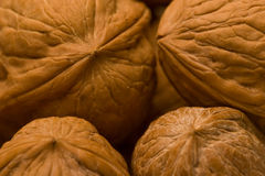 грецкие орехи III Стоковое Изображение