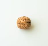 Грецкий орех в раковине на белой предпосылке Стоковые Изображения