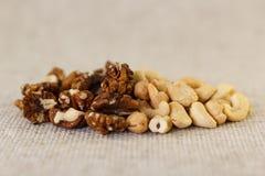 Грецкий орех и анакардия в половине стоковые фото