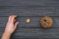 Грецкий орех и кокос на верхней части взгляда таблицы Стоковые Изображения