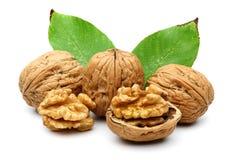 Грецкий орех и листья стоковая фотография