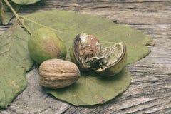 Грецкий орех и стержень грецкого ореха на деревянном столе Стоковая Фотография
