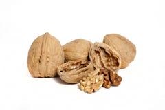 Грецкий орех и треснутый грецкий орех Стоковое фото RF