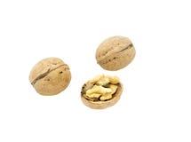 Грецкий орех и треснутый изолированный грецкий орех Стоковые Фотографии RF
