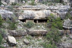 грецкий орех каньона Стоковые Изображения RF