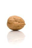 грецкий орех отражения Стоковые Фотографии RF