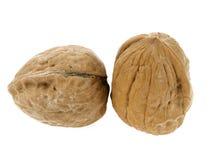 грецкий орех пар Стоковые Фотографии RF