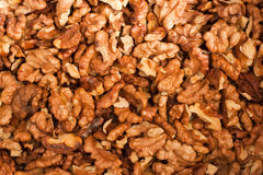 грецкий орех предпосылки стоковое изображение