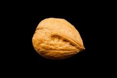 грецкий орех раковины стоковое фото