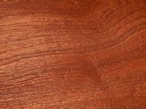 Грецкий орех реальной деревянной облицовки американский Материал для интерьера и мебели стоковые фотографии rf