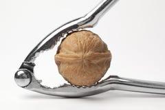 грецкий орех Щелкунчика Стоковые Изображения RF