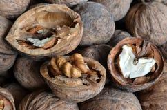Грецкий орех ядра в форме сердца Стоковые Изображения RF