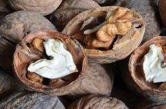 Грецкий орех ядра в форме сердца Стоковое Фото