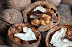 Грецкий орех ядра в форме сердца Стоковые Изображения