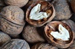 Грецкий орех ядра в форме сердца Стоковая Фотография
